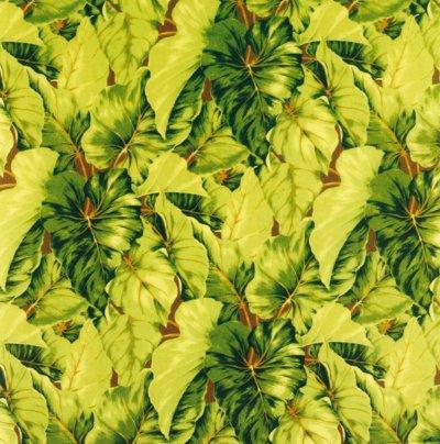 Ткань для ролет leaves